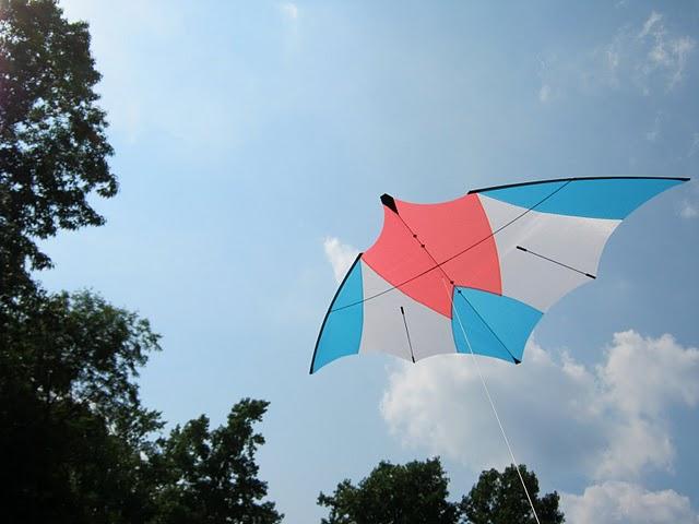 Old dominion sport kite championship for Indoor kite design
